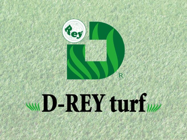 環境芝D-REY turf
